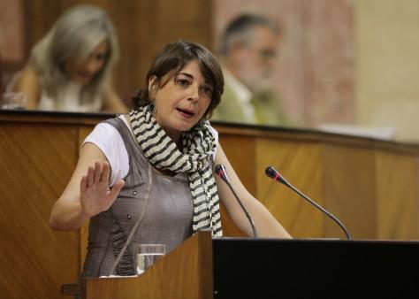 Elena Cortés durante una intervención en el Parlamento de Andalucía. FOTO | www.iuandalucia.org